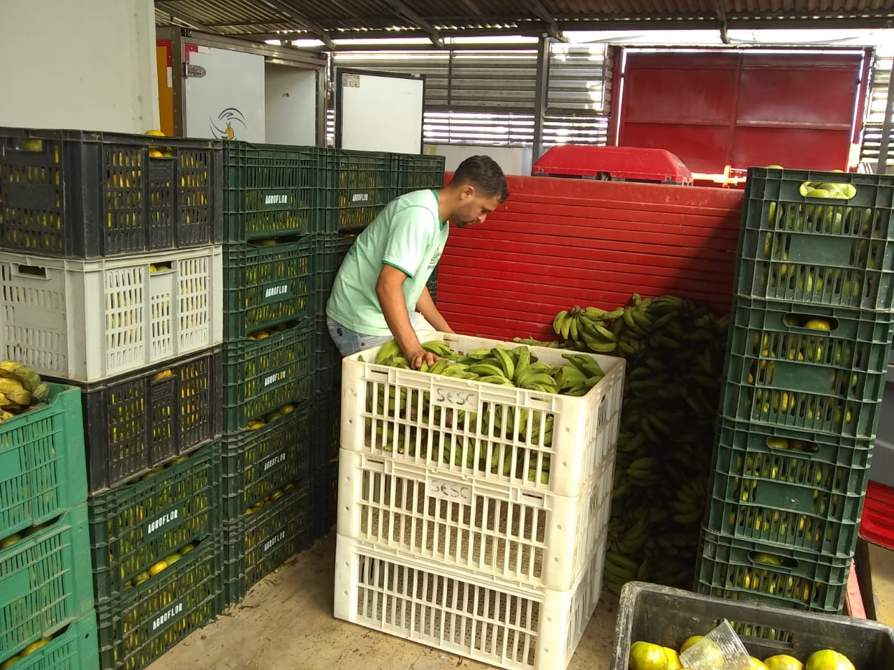 Entrega dos produtos do PAA na AGROFLOR